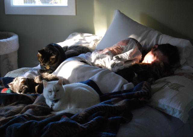 kitty morning