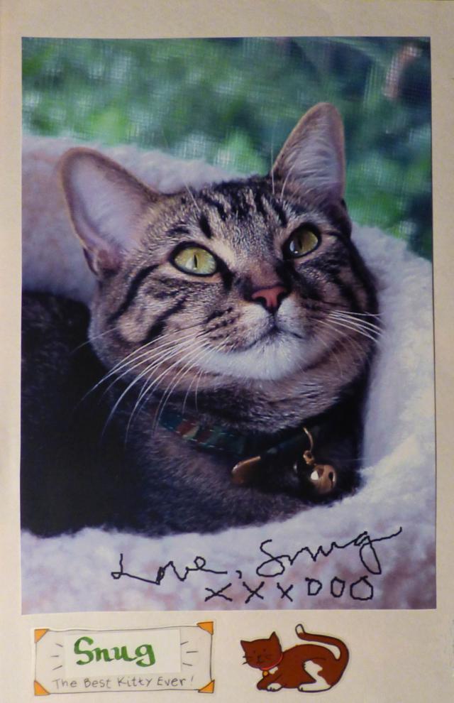 snugglebug (april 26, 2001 - september 20, 2019)
