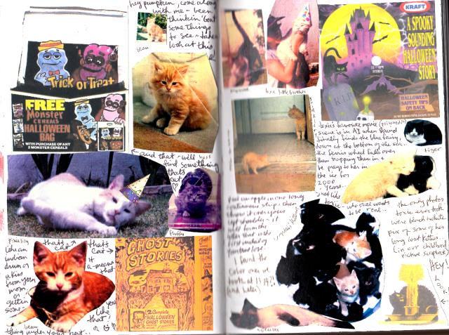 toxic's kitties