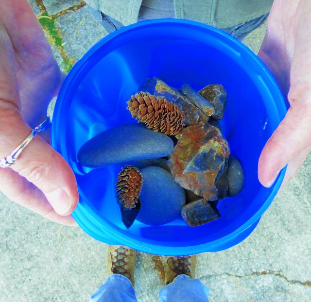 rocks & cones