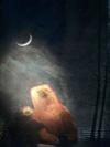 Moonsliver2_2